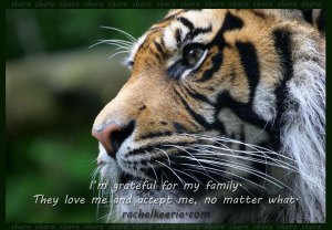 tiger family